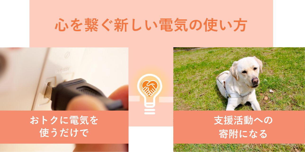 「おトクに電気を使うだけで、支援活動への寄附になる」心を繋ぐ新しい電気の使い方